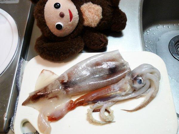 イカの捌き方(1)
