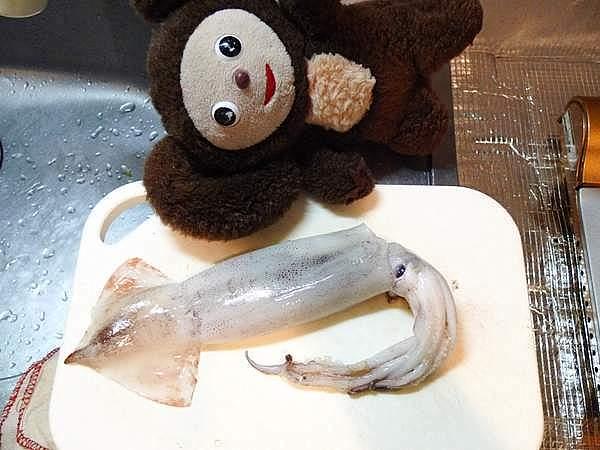 イカのオイスターソース炒め 作り方