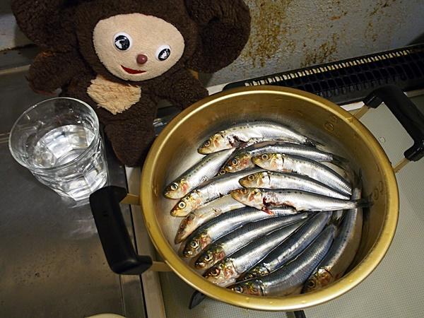 イワシ甘露煮 作り方