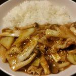 豚肉とネギの中華丼