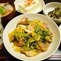 小松菜入りの親子炒め
